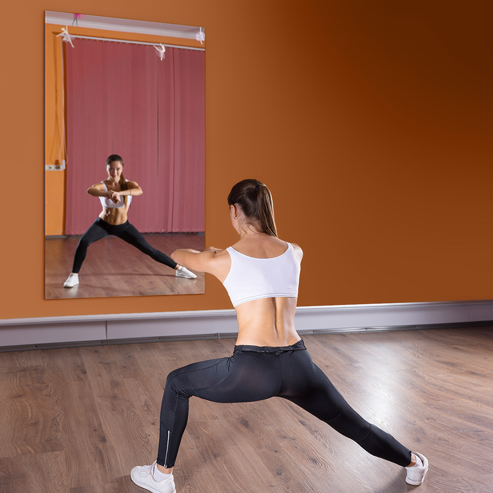 Fantastic Gym Mirrors Home Interior And Landscaping Spoatsignezvosmurscom